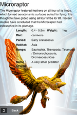 Album DNA Rare Microraptor