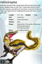 Album Event Exclusive Rare Velociraptor