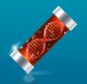 Fake DNA Icon