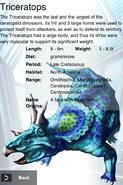 Album Rare Triceratops