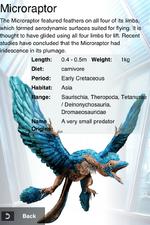 Album Rare Microraptor