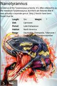 Album Super Rare Nanotyrannus