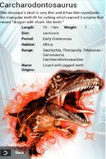 Album Super Rare Carcharodontosaurus
