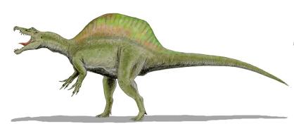 File:Spinosaurus BW2.png