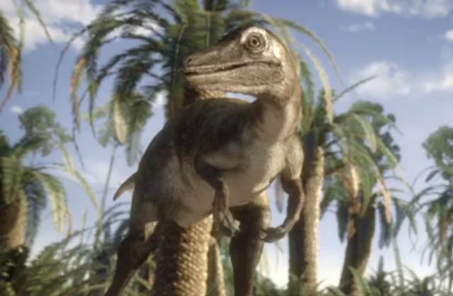 File:Saurornithoides 3.png