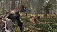 Microraptor vs saurornitosaurus