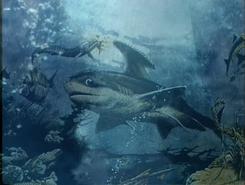 PaleoWorld - Prehistoric Sharks (8)