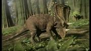 Chasmosaurus 1