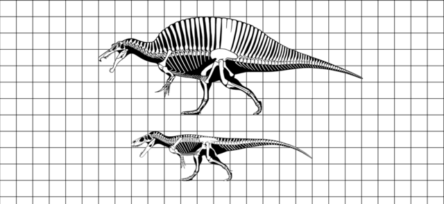 File:Spinosaurus vs. Torvosaurus.png