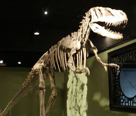 File:Sinraptor hepingensis.jpg