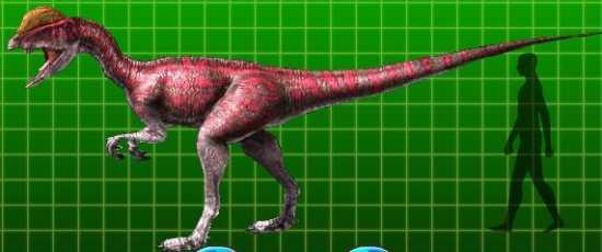 File:Dilophosaurus alpha.JPG