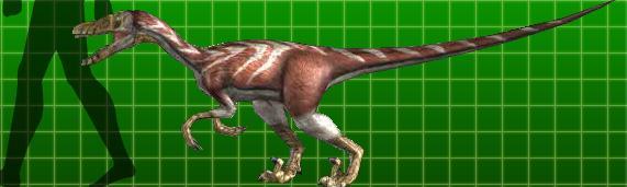 velociraptor dinosaur king fandom powered by wikia