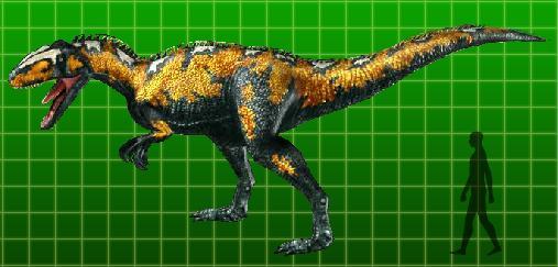 File:Sinraptor.jpg