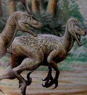Utahraptor-3