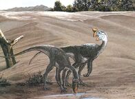 Pic oviraptor