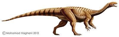 File:New plateosaurus.png