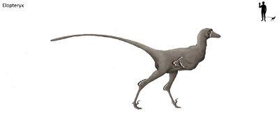 Elopteryx by hyrotrioskjan-d3llwnd