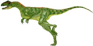 Halticosaurus longotarsus