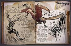 800px-Archaeopteryx Dossier