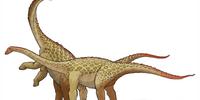 Saltasaurus/Gallery