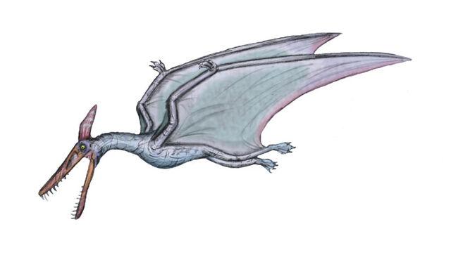 File:Ludodactylus sibbicki by maniraptora.jpg