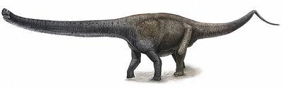 YuanmousaurusAndrey-Atuchin