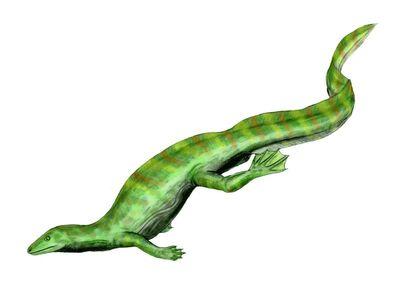 Hovasaurus BW