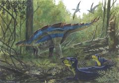 Wuerhosaurus2.png