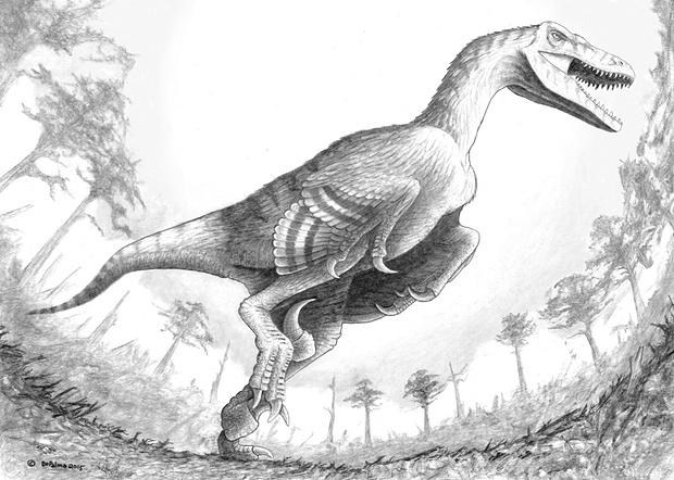File:Dakotaraptor.jpg