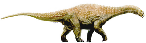 20090706235924!Diamantinasaurus
