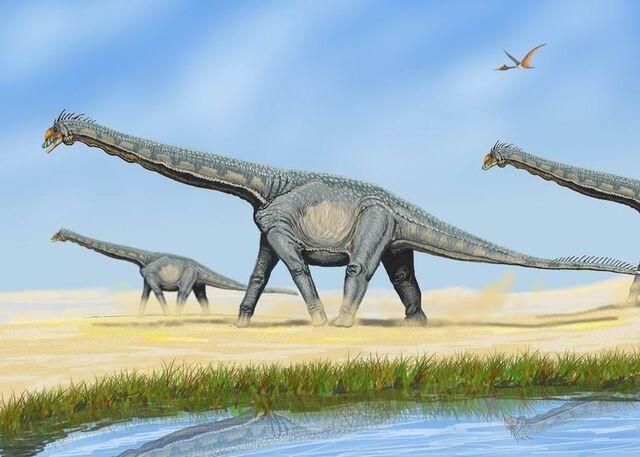 File:800px-AlamosaurusDB.jpg