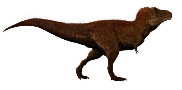 File:TyrannosuarusFeathers.jpg