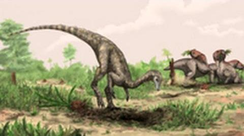 World's Oldest Known Dinosaur Identified