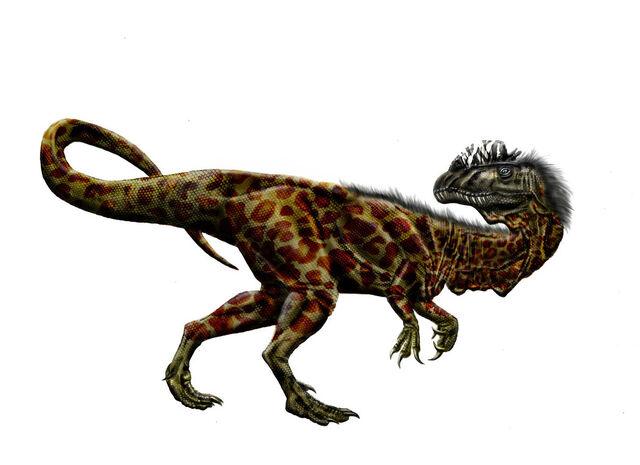 File:DilophosaurusFeathers.jpg