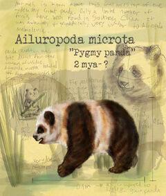 Ailuropoda microta by shockshockshad-d5tatnq.jpg