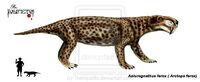 Aelurognathus ferox
