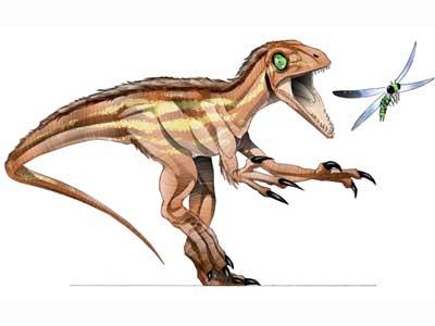 Scipionyx