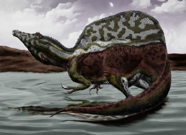 File:Spinosaurus durbed.jpg