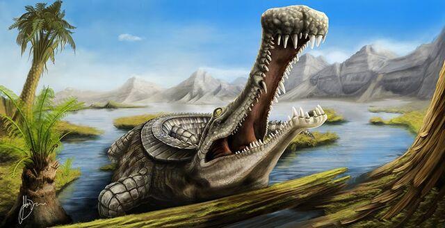 File:Sarcosuchus Imperator.jpg