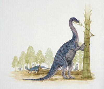 EuskelosaurusGE