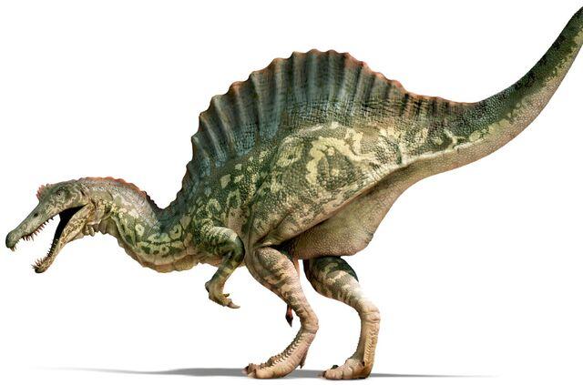 File:Spinosaurus HiRes xfswcz.jpg