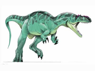 File:AllosaurusJPI.jpg