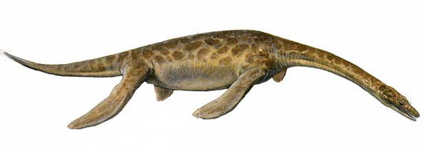 File:Pistosauru.jpg