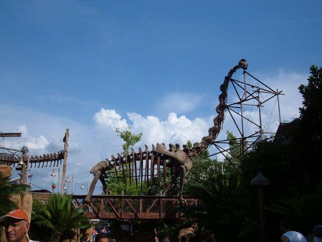 File:Replica Brachiosaurus skeleton, DinoLand USA.jpg