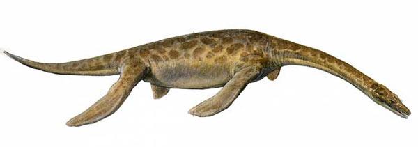 File:Pistosaur.jpg