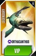 OrthacanthusCard