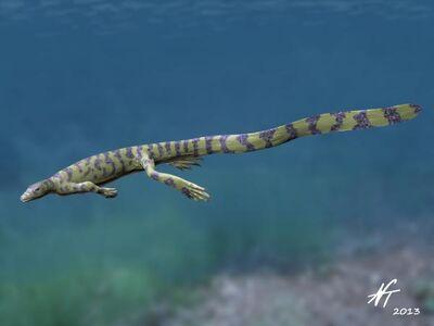Tangasaurus NT