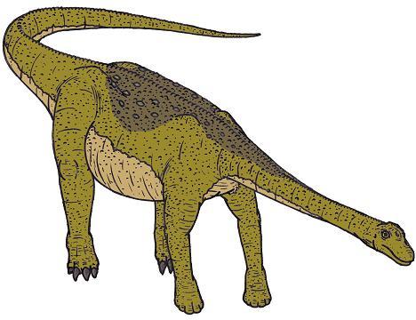 File:I1 Nemegtosaurus 0280 s.jpg