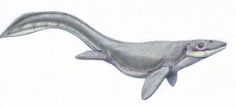 Dollosaurus