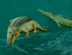 File:Mastodnsaurus.jpg